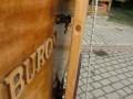 holzpirat-org_masttransportauflage_cimg32639_600x800