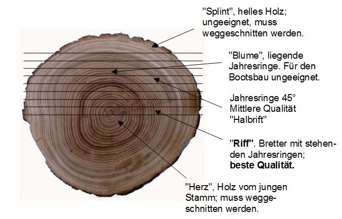Rolfs-Neubau-00e